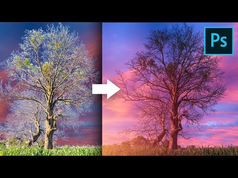 Remove Fringes Around Trees During Sky Swap! - Photoshop Tutorial thumbnail
