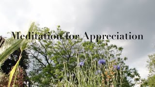 Meditation for Appreciation ( Gratitude Meditation as played on BBC Radio London )