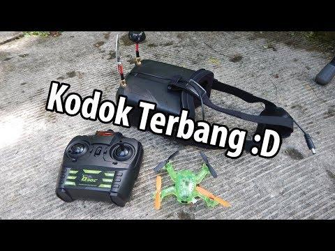 Eachine Q90C Drone Kodok Ijo Buat Berpetualangan Di Outdoor xD