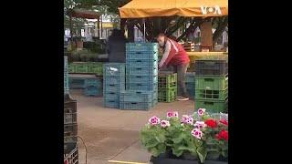 布拉格的户外市场在经过一个月关闭后重新开放