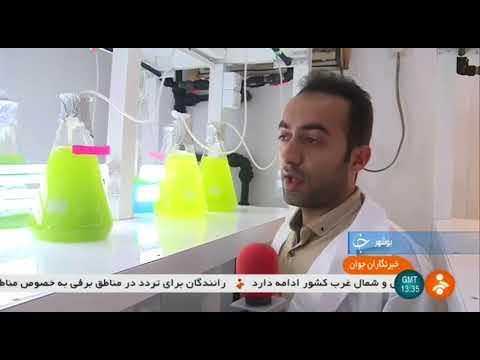 Iran Persian Gulf Bio-medical Sciences Research Institute, Sea Cucumber poison سم خيار دريايي