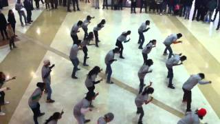 Dishtv flash mob - dish sawaar hai