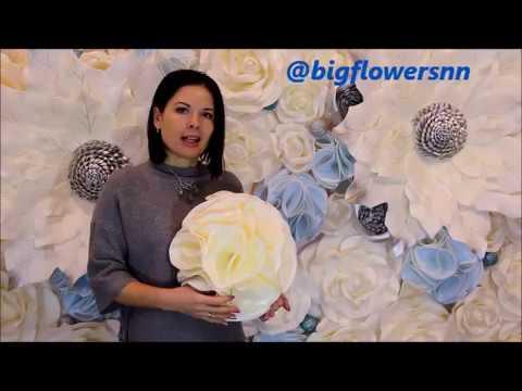 Цветок пион своими руками фото 563