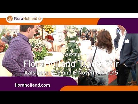 Visit the FloraHolland Trade Fair Aalsmeer 2015