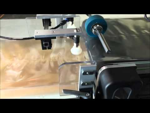 Dartronics Pick and Place Bag Feeding and Labeling System