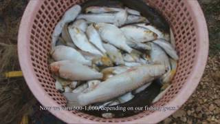 Conservation zone: from survival to sustainable fishing (Khmer)