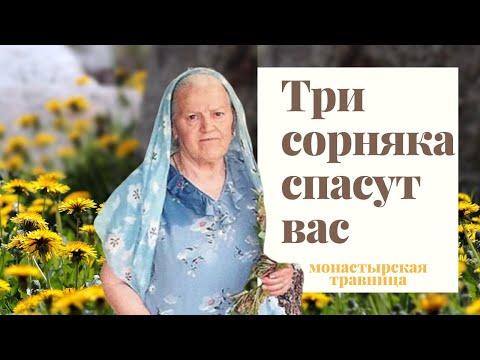 Монастырская Травница | Три злостных сорняка, которые спасут вас