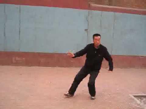 mestre Wang Tie Cheng 王铁成