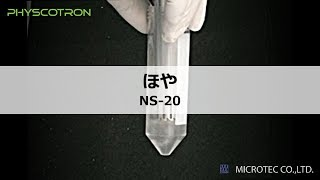 ほやの破砕処理【超高速ホモジナイザー ヒスコトロン】㈱マイクロテック・ニチオン thumbnail