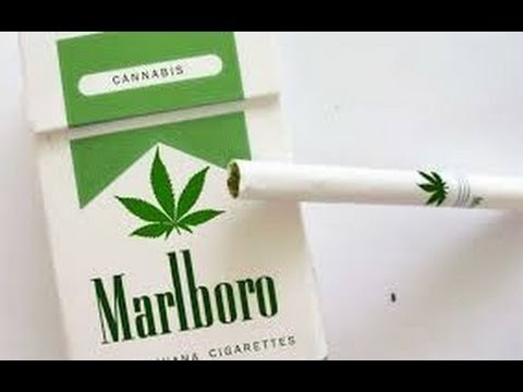 Marijuana Use Set To Surpass Tobacco Use