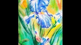 Как рисовать акварелью цветок ириса. Урок 50