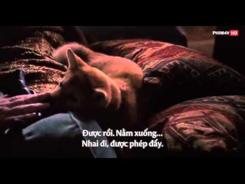 [vietsub] Chú Chó Hachiko - Hachiko A Dog's Story (2009) Ep1