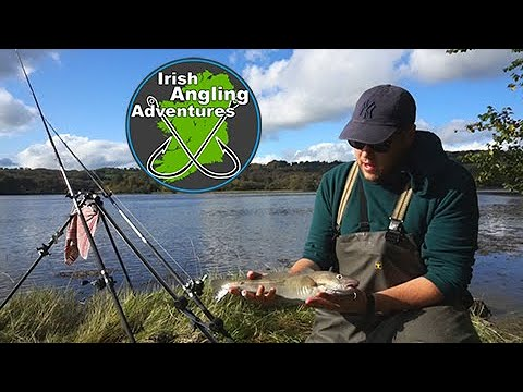 Cod And Flounder Estuary Fishing #Cod #Flounder #Bass