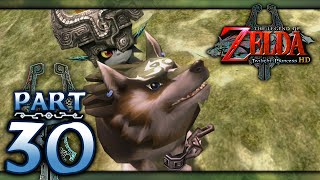 The Legend of Zelda: Twilight Princess HD - Part 30 - Poe Hunting