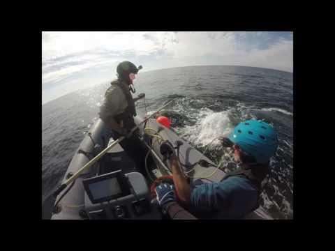 Right Whale Disentanglement 06JAN17