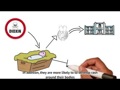 Waste Management in Japan: A Personal Project by Kien N  - YouTube