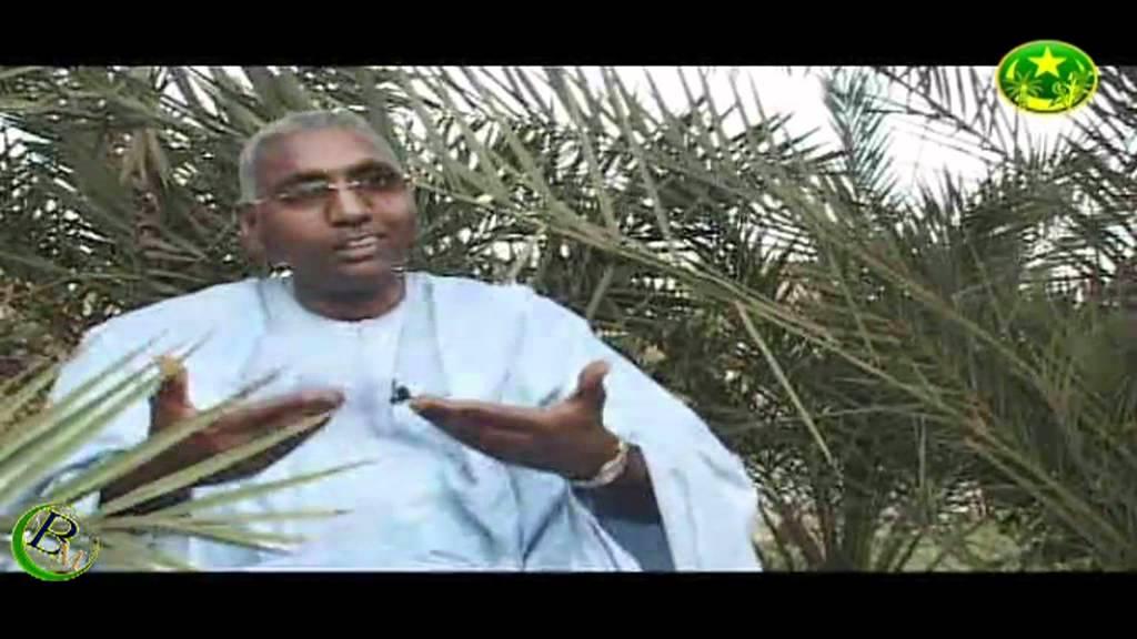 Khalifa Ould Eide & Dimi Mint Abba - Moorish Music From Mauritania