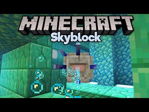 Skyblock Ocean Monument Mystery?! ▫ Minecraft 1.15 Skyblock (Tutorial Let's Play) [Part 22]