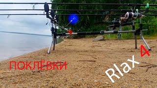 Карпфишинг поклёвки Relax 4 Рыбалка на карпа