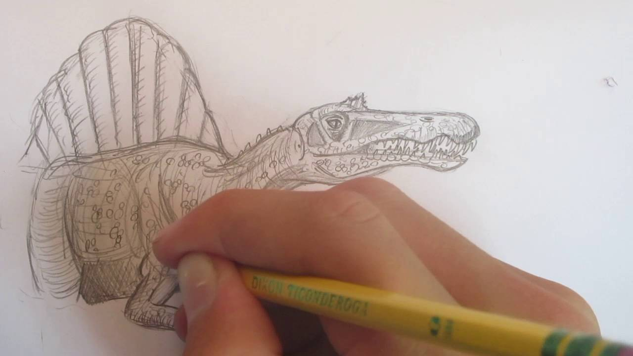 How to Draw Spinosaurus from Jurassic Park 3, Part 1 ...