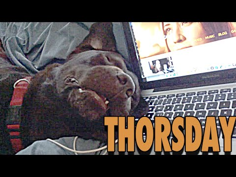 THORSDAY - Thor, Look Normal