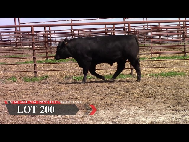 Mead Farms Lot 200