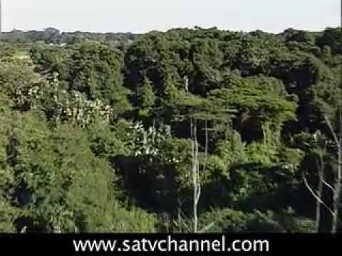 KwaZulu-Natal, South Coast : SOUTH AFRICA TRAVEL