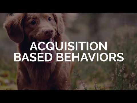 Acquisition Based Behaviors - Michael Ellis