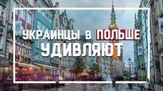 Украинцы в Польше Удивляют.