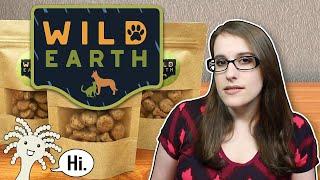 Cultured Vegan Dog Food Is Coming! Should We Be Skeptical?