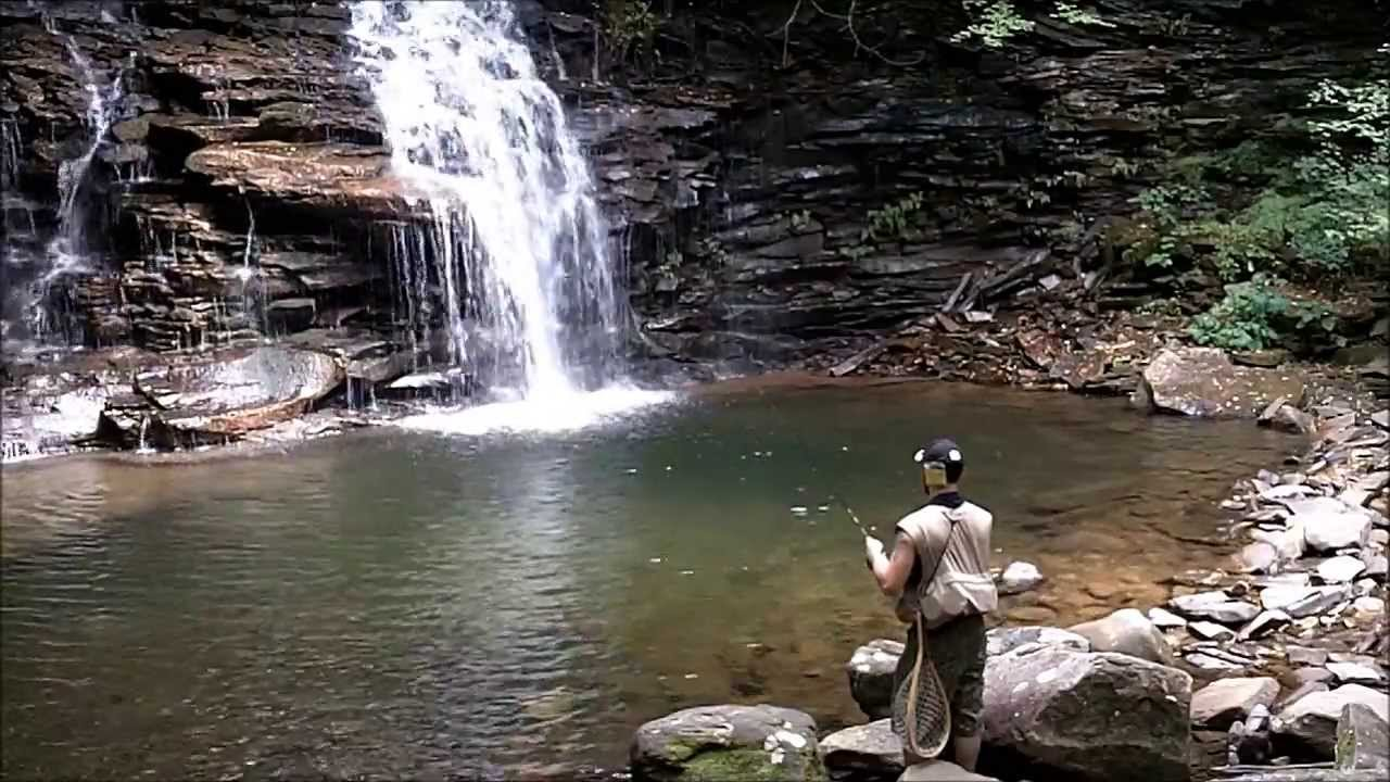 Summer trout fishing 2013 pennsylvania youtube for Trout fishing pa
