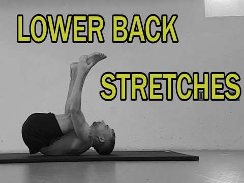 THE COMPLETE STRETCHING VIDEO GUIDE || LOWER BACK STRETCHES