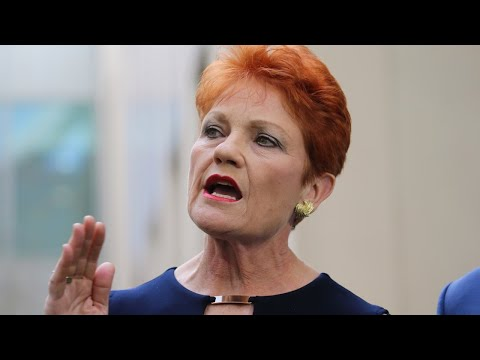Pauline Hanson And Bob Katter Are Working Together 'for Their Love Of The Country'