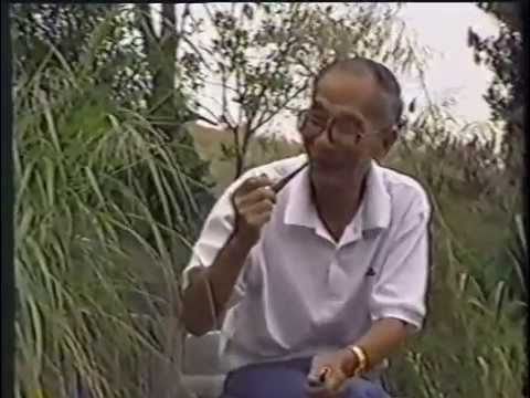 Rare Interview of Wing Chun Grandmaster Ip Chun by Chris Chan