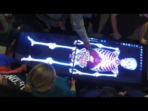 Human Anatomy Class Goes Virtual