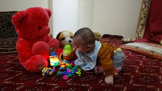 Cute Baby Enjoying Toys | Toys For Kids | Funny Baby Video For Babies