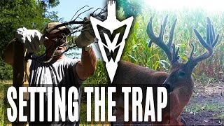 Setting the Trap For an Iowa Giant | Midwest Whitetail