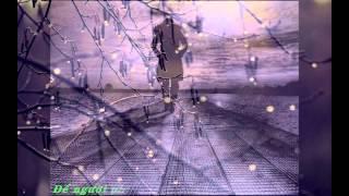[ Lyric ] Diễm xưa - Đàm Vĩnh Hưng
