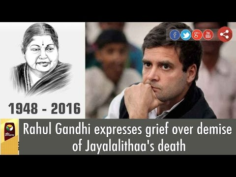 Rahul Gandhi expresses grief over demise of Jayalalithaa's death