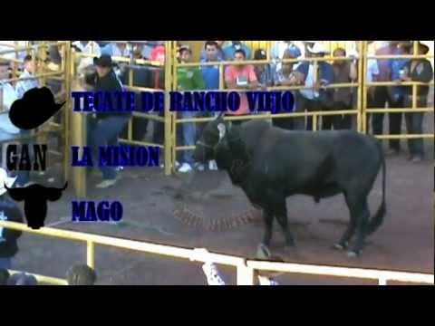 MAGO vs TECATE DE RANCHO VIEJO ( LA MISION vs GUERREROS DE OAXACA)