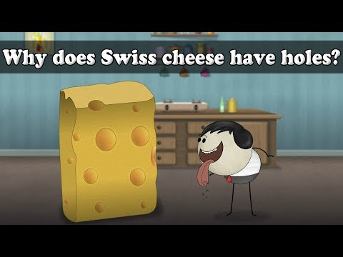 Why does Swiss cheese have holes? | Smart Learning for All