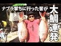 Day In Suburban High Life #6. 別府湾カヤックナブラ撃ち!の筈が....