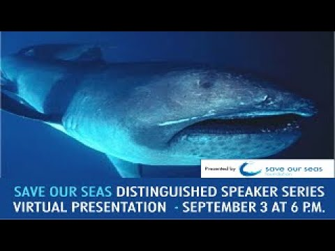 Save Our Seas Distinguished Speakers Series - Deepwater Sharks: The Latest Research
