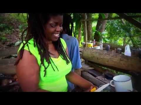 Vegan & Raw Food Jamaica *Living Akashi* Rainforest Retreats