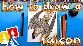 How To Draw A Diving Peregrine Falcon