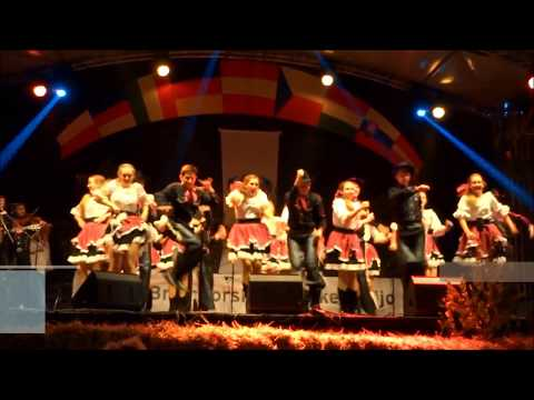 "American Rhythm Folk Ensemble (USA) - ""Cotton eyed Joe"""