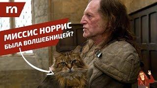 ТОП 10 фанатских теорий Гарри Поттера