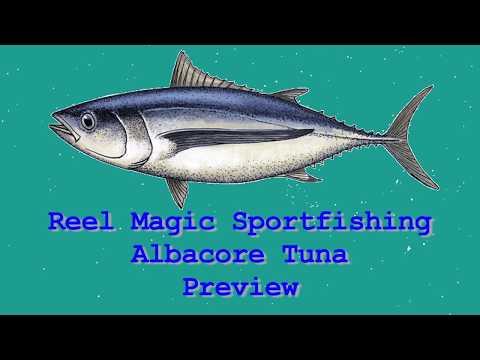 Reel Magic Sportfishing - Albacore Fishing  - Preview