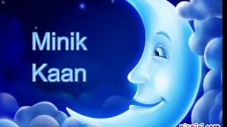 Minik Kaan Ninnisi