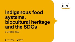 Indigenous food systems, biocultural heritage and the SDGs (session one: morning)
